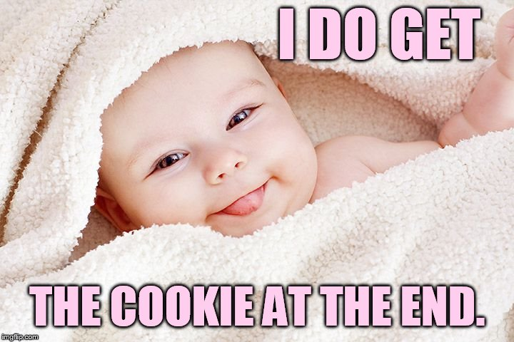 I DO GET THE COOKIE AT THE END. | made w/ Imgflip meme maker