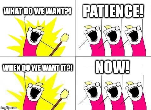 What Do We Want Meme | WHAT DO WE WANT?! PATIENCE! WHEN DO WE WANT IT?! NOW! | image tagged in memes,what do we want | made w/ Imgflip meme maker