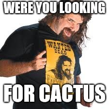 WERE YOU LOOKING FOR CACTUS | made w/ Imgflip meme maker