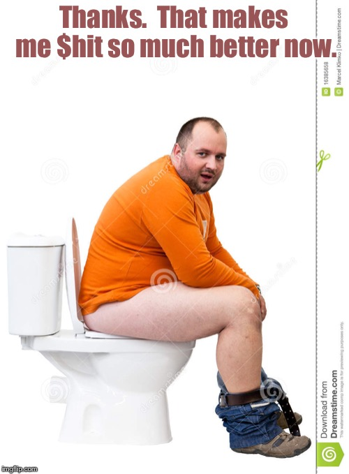 Man on toilet | Thanks.  That makes me $hit so much better now. | image tagged in man on toilet | made w/ Imgflip meme maker
