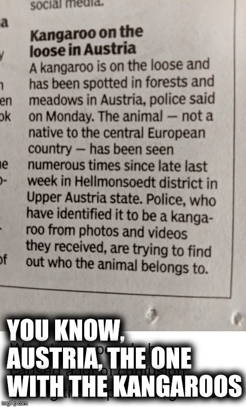 YOU KNOW, AUSTRIA, THE ONE WITH THE KANGAROOS | made w/ Imgflip meme maker