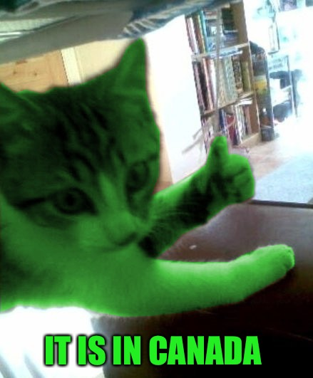 thumbs up RayCat | IT IS IN CANADA | image tagged in thumbs up raycat | made w/ Imgflip meme maker