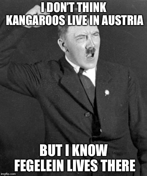 Angry Hitler | I DON'T THINK KANGAROOS LIVE IN AUSTRIA BUT I KNOW FEGELEIN LIVES THERE | image tagged in angry hitler | made w/ Imgflip meme maker
