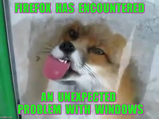 FIREFOX  HAS  ENCOUNTERED AN  UNEXPECTED  PROBLEM  WITH  WINDOWS | made w/ Imgflip meme maker