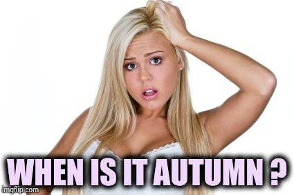 dumb blonde | WHEN IS IT AUTUMN ? | image tagged in dumb blonde | made w/ Imgflip meme maker