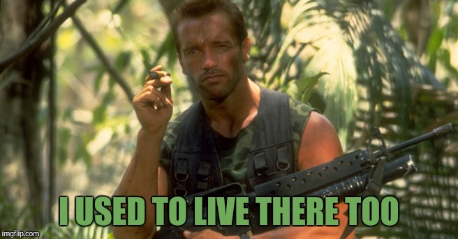 Arnold s | I USED TO LIVE THERE TOO | image tagged in arnold s | made w/ Imgflip meme maker
