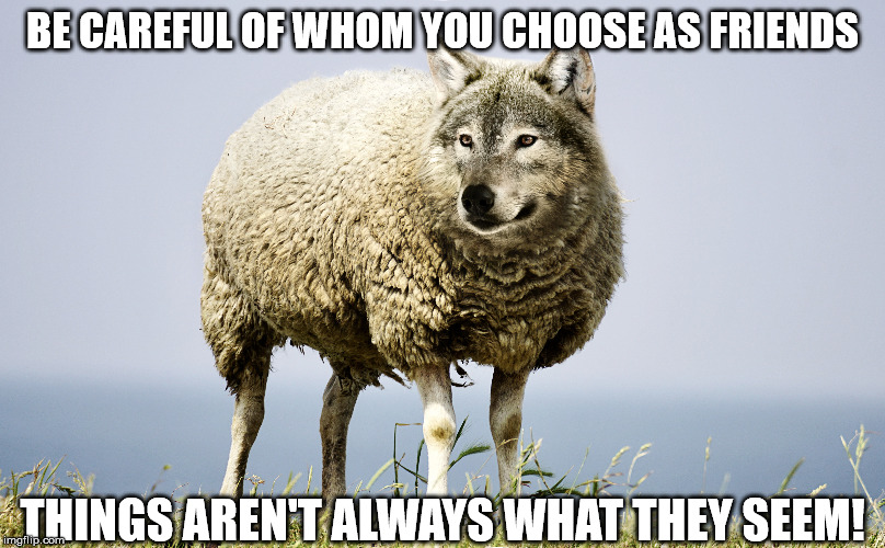 Things aren't always clear in certain situations... | BE CAREFUL OF WHOM YOU CHOOSE AS FRIENDS THINGS AREN'T ALWAYS WHAT THEY SEEM! | image tagged in unclear,phony,wolf,two faced,sheep's clothing,memes | made w/ Imgflip meme maker