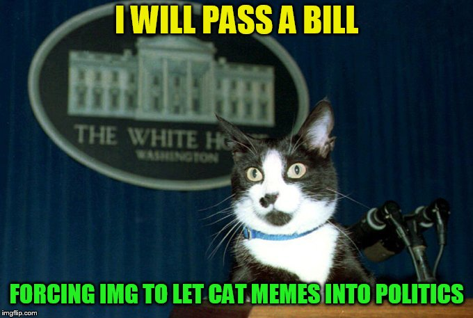 I WILL PASS A BILL FORCING IMG TO LET CAT MEMES INTO POLITICS | made w/ Imgflip meme maker