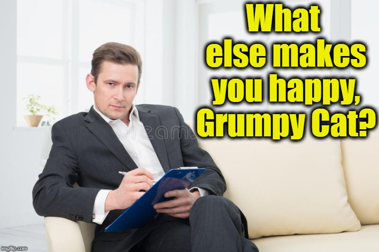therapist | What else makes you happy, Grumpy Cat? | image tagged in therapist | made w/ Imgflip meme maker