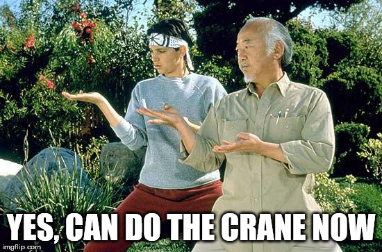 Karate Kid Practice  | YES, CAN DO THE CRANE NOW | image tagged in karate kid practice | made w/ Imgflip meme maker