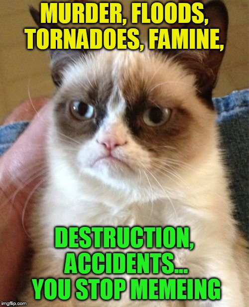 Grumpy Cat Meme | MURDER, FLOODS, TORNADOES, FAMINE, DESTRUCTION, ACCIDENTS... YOU STOP MEMEING | image tagged in memes,grumpy cat | made w/ Imgflip meme maker