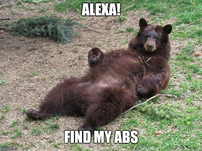 Alexa, find my abs bear | ALEXA! FIND MY ABS | image tagged in fat,abs,fitness,exercise,workout,bear | made w/ Imgflip meme maker