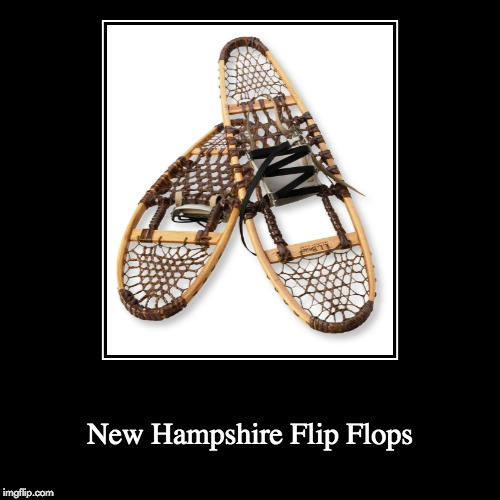 New Hampshire Flip Flops | image tagged in funny,demotivationals | made w/ Imgflip demotivational maker
