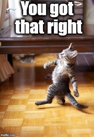 Cool Cat Stroll Meme | You got that right | image tagged in memes,cool cat stroll | made w/ Imgflip meme maker