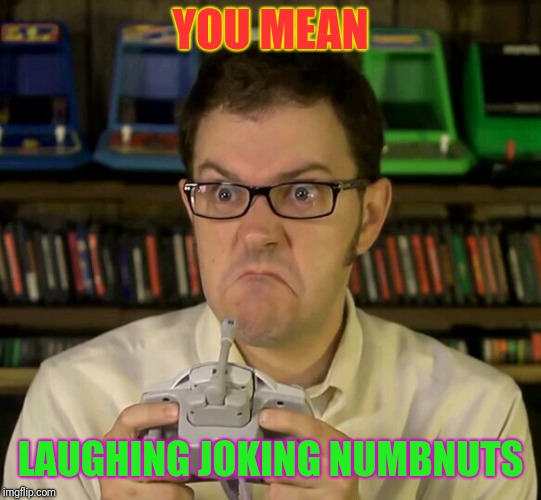 Angry Video Game Nerd | YOU MEAN LAUGHING JOKING NUMBNUTS | image tagged in angry video game nerd | made w/ Imgflip meme maker