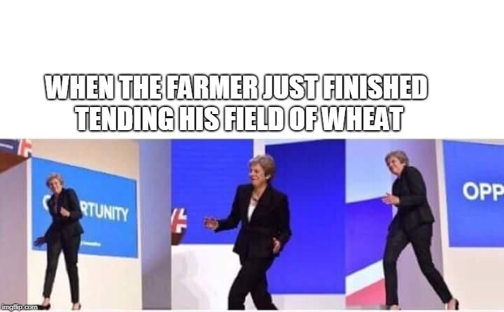 I couldn't help myself | WHEN THE FARMER JUST FINISHED TENDING HIS FIELD OF WHEAT | image tagged in theresa may walking confidently,wheat,field of wheat,theresa may,funny dancing,opportunity | made w/ Imgflip meme maker