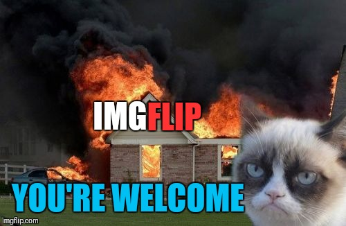 Burn Kitty Meme | IMG FLIP YOU'RE WELCOME | image tagged in memes,burn kitty,grumpy cat,phteven dog,tuna the dog phteven | made w/ Imgflip meme maker