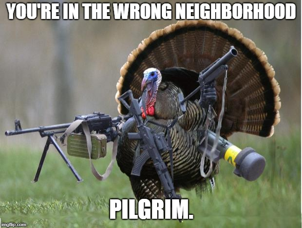 turkey | YOU'RE IN THE WRONG NEIGHBORHOOD PILGRIM. | image tagged in turkey | made w/ Imgflip meme maker