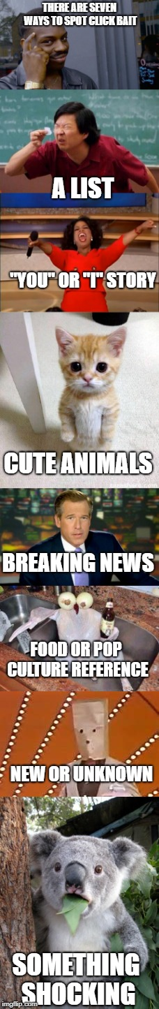 "How to spot clickbait | THERE ARE SEVEN WAYS TO SPOT CLICK BAIT A LIST ""YOU"" OR ""I"" STORY CUTE ANIMALS BREAKING NEWS FOOD OR POP CULTURE REFERENCE NEW OR UNKNOWN SO 
