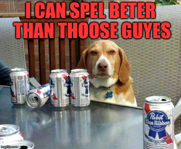beer dog | I CAN SPEL BETER THAN THOOSE GUYES | image tagged in beer dog | made w/ Imgflip meme maker