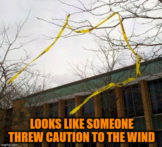 Living dangerous. | LOOKS LIKE SOMEONE THREW CAUTION TO THE WIND | image tagged in memes,bad pun,funny,caution,throw,wind | made w/ Imgflip meme maker