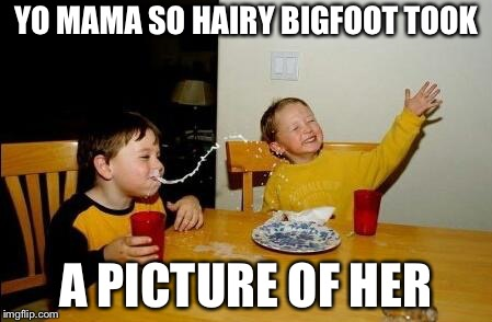 Yo Momma So Fat |  YO MAMA SO HAIRY BIGFOOT TOOK; A PICTURE OF HER | image tagged in yo momma so fat | made w/ Imgflip meme maker