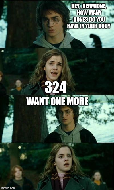 Harry Potter and Hermione | HEY , HERMIONE, HOW MANY BONES DO YOU HAVE IN YOUR BODY 324 WANT ONE MORE | image tagged in harry potter and hermione | made w/ Imgflip meme maker