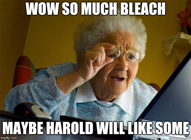 Granny Internet | WOW SO MUCH BLEACH MAYBE HAROLD WILL LIKE SOME | image tagged in granny internet | made w/ Imgflip meme maker