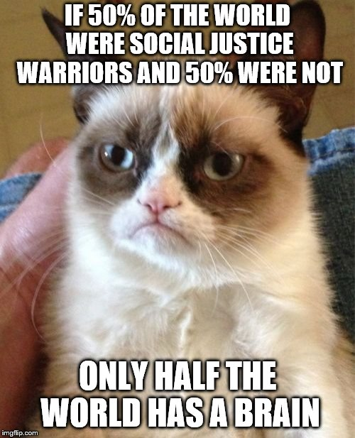 Grumpy Cat | IF 50% OF THE WORLD WERE SOCIAL JUSTICE WARRIORS AND 50% WERE NOT ONLY HALF THE WORLD HAS A BRAIN | image tagged in memes,grumpy cat | made w/ Imgflip meme maker