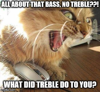 angry cat | ALL ABOUT THAT BASS, NO TREBLE??! WHAT DID TREBLE DO TO YOU? | image tagged in angry cat | made w/ Imgflip meme maker