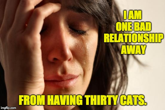 First World Problems Meme | I AM ONE BAD RELATIONSHIP AWAY FROM HAVING THIRTY CATS. | image tagged in memes,first world problems | made w/ Imgflip meme maker