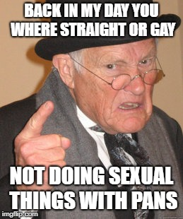 my 82 year old grandma | BACK IN MY DAY YOU WHERE STRAIGHT OR GAY NOT DOING SEXUAL THINGS WITH PANS | image tagged in memes,back in my day | made w/ Imgflip meme maker