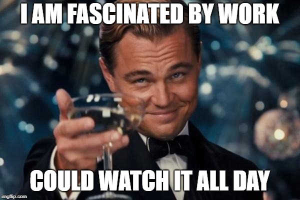 Leonardo Dicaprio Cheers Meme | I AM FASCINATED BY WORK COULD WATCH IT ALL DAY | image tagged in memes,leonardo dicaprio cheers | made w/ Imgflip meme maker