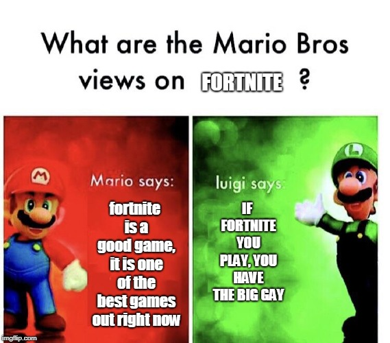 Mario Bros. Views | FORTNITE fortnite is a good game, it is one of the best games out right now IF FORTNITE YOU PLAY, YOU HAVE THE BIG GAY | image tagged in mario bros views | made w/ Imgflip meme maker