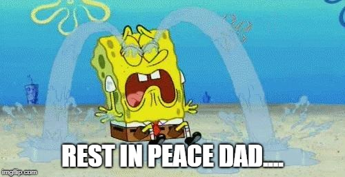 Rest in Peace Stephen Hillenburg...:(  | REST IN PEACE DAD.... | image tagged in sad crying spongebob,death,rip | made w/ Imgflip meme maker