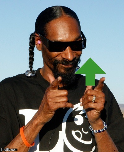 Snoop Dogg approves | image tagged in snoop dogg approves | made w/ Imgflip meme maker