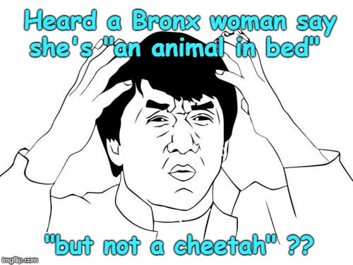 "Jackie Chan WTF |  Heard a Bronx woman say she's ""an animal in bed""; ""but not a cheetah"" ?? 