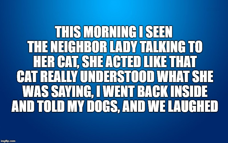 Crazy Cat Lady | THIS MORNING I SEEN THE NEIGHBOR LADY TALKING TO HER CAT, SHE ACTED LIKE THAT CAT REALLY UNDERSTOOD WHAT SHE WAS SAYING, I WENT BACK INSIDE  | image tagged in crazy cat lady,dogs an cats,dogs rule,dogs,cats | made w/ Imgflip meme maker