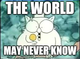 tootsie pop owl | THE WORLD MAY NEVER KNOW | image tagged in tootsie pop owl | made w/ Imgflip meme maker