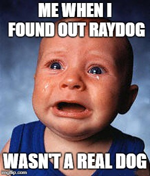 Crying baby  | ME WHEN I FOUND OUT RAYDOG WASN'T A REAL DOG | image tagged in crying baby | made w/ Imgflip meme maker