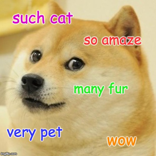 Doge | such cat so amaze many fur very pet wow | image tagged in memes,doge | made w/ Imgflip meme maker