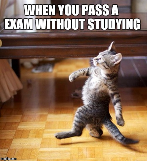 Cat Walking Like A Boss | WHEN YOU PASS A EXAM WITHOUT STUDYING | image tagged in cat walking like a boss | made w/ Imgflip meme maker