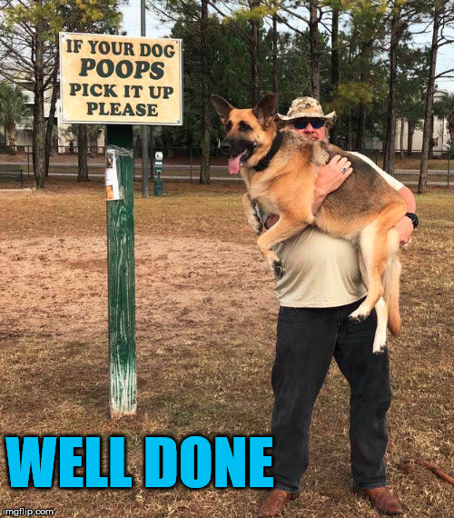 Well he at least read the sign. |  WELL DONE | image tagged in memes,signs,funny,dogs,dog poop | made w/ Imgflip meme maker