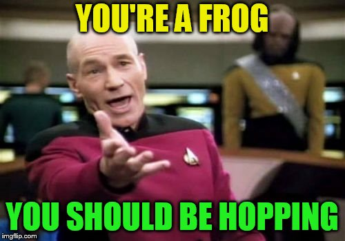 Picard Wtf Meme | YOU'RE A FROG YOU SHOULD BE HOPPING | image tagged in memes,picard wtf | made w/ Imgflip meme maker