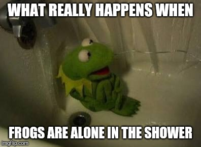 Kermit Shower | WHAT REALLY HAPPENS WHEN FROGS ARE ALONE IN THE SHOWER | image tagged in kermit shower | made w/ Imgflip meme maker