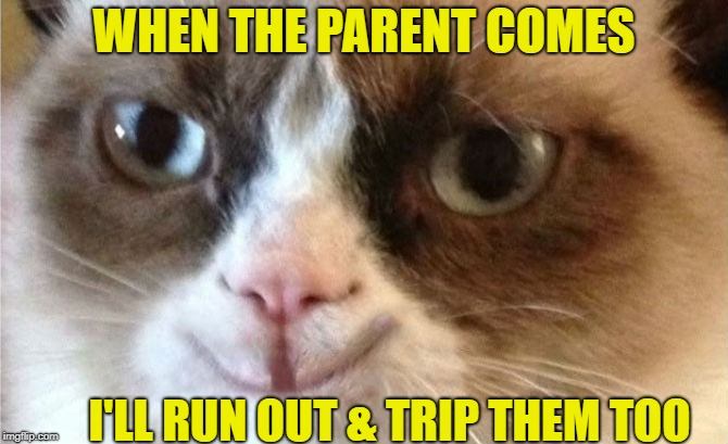 WHEN THE PARENT COMES I'LL RUN OUT & TRIP THEM TOO | made w/ Imgflip meme maker