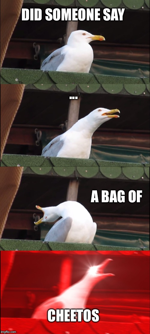 DID SOMEONE SAY ... A BAG OF CHEETOS | image tagged in memes,inhaling seagull | made w/ Imgflip meme maker