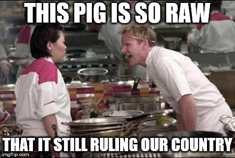 Angry Chef Gordon Ramsay | THIS PIG IS SO RAW THAT IT STILL RULING OUR COUNTRY | image tagged in memes,angry chef gordon ramsay | made w/ Imgflip meme maker