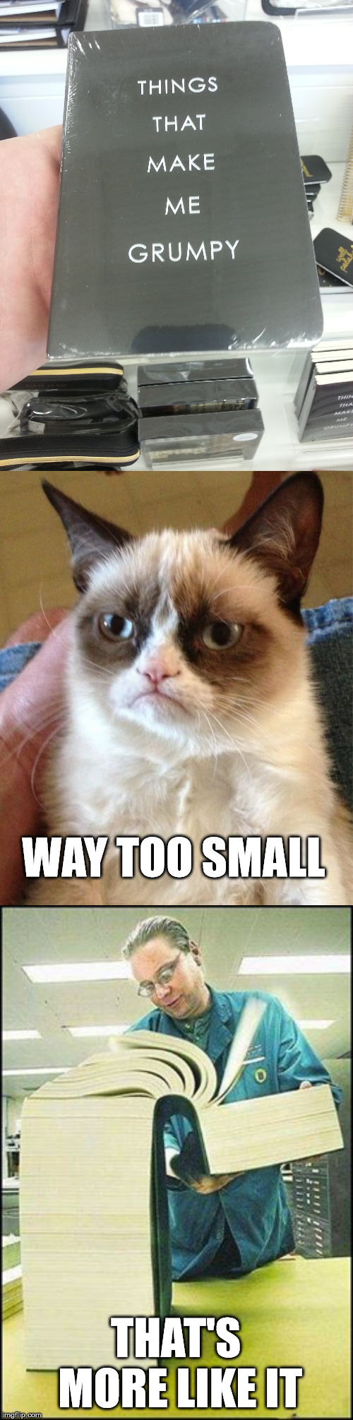 Things that make me grumpy | WAY TOO SMALL THAT'S MORE LIKE IT | image tagged in memes,grumpy cat | made w/ Imgflip meme maker