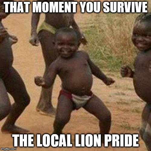 Third World Success Kid Meme | THAT MOMENT YOU SURVIVE THE LOCAL LION PRIDE | image tagged in memes,third world success kid | made w/ Imgflip meme maker